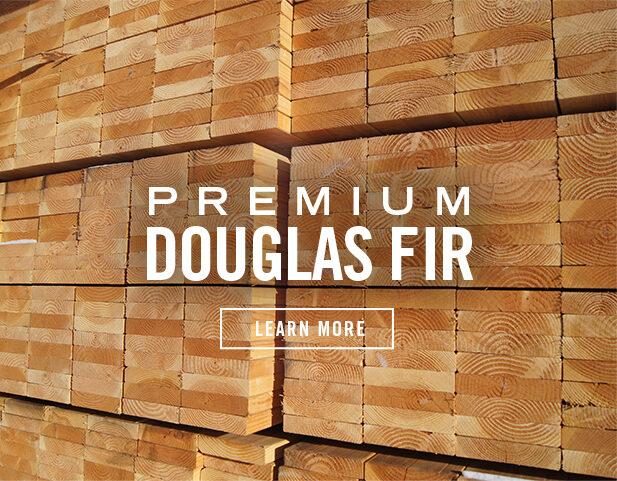 Premium Douglas Fir